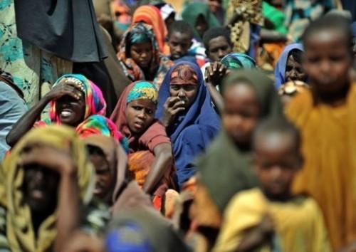 DAAB SOMAALIE.jpg